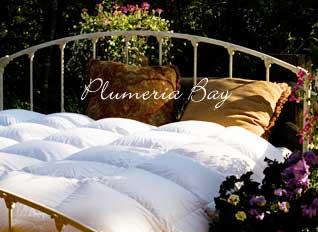 bed-comforter.jpg